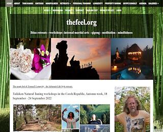 Ibiza retreats health and longevity